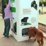 OVO JE FENOMENALNO: Uređaj za reciklažu – ubaciš flašu, izbaci hranu za ulične ljubimce!