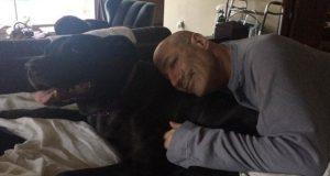 simpsonovi i pas petface