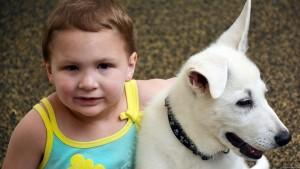 devojcica i pas bez noge petface6