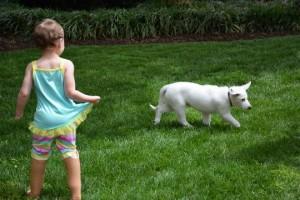 devojcica i pas bez noge petface8