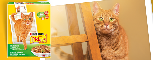 Mačke biraju hranu friskies petface