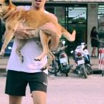 NAKLON OVOM DEČKU: Svakodnevno ide ulicama, pronalazi lutalice i kupa ih! (VIDEO)
