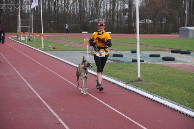 maraton sa psima petface