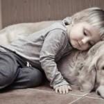 UVEK TUŽNA TEMA: Kako pomoći detetu da preboli smrt ljubimca?