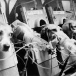 ZAUSTAVIMO: 150 miliona životinja svake godine u svetu strada u surovim eksperimentima!