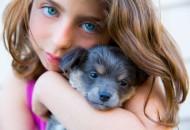devojcica i pas petface
