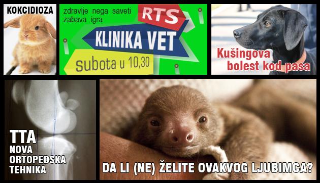 petface klinika-vet-najava-emisije-23,05,2015