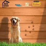 SJAJNA AKCIJA: Udomiš psa i dobiješ kućicu BESPLATNO!