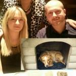 BRAVO, BRAVO: Marina i Aleksandar spasavaju, brinu i udomljavaju odbačene pse. Do sada spasili preko 40!