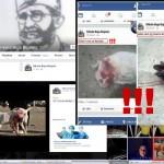 STRAVA U SREMSKOJ MITROVICI: Nikola ubio mace kolcem, pa se pohvalio na Facebook-u!
