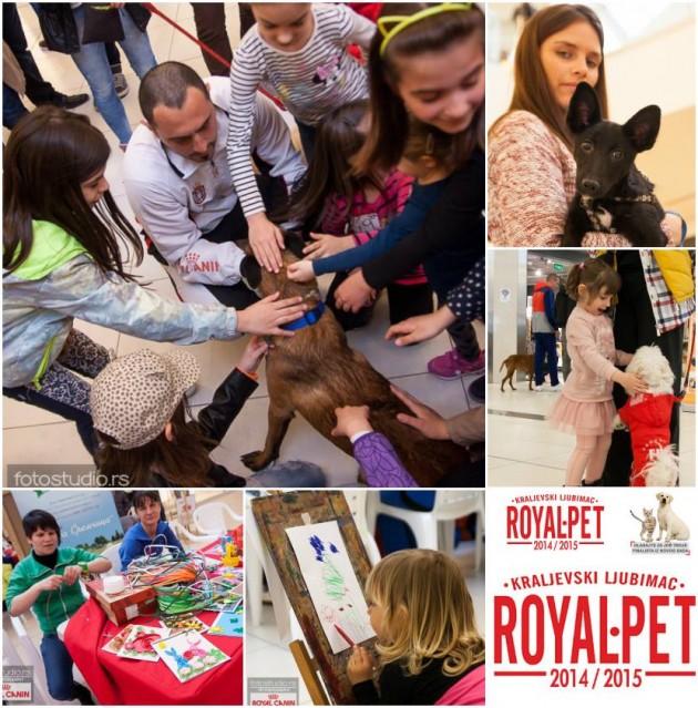 royal pet finale petface