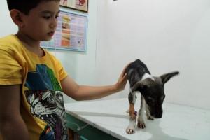 DETE ZA PRIMER: Devetogodišnjak od garaže napravio sklonište za ugrožene životinje! (FOTO)