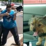 Razbio prozor od automobila, da bi spasio zaključanog psa – pa završio u pritvoru!