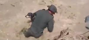 spasio psa iz poplava petface
