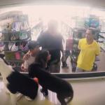BRAVO, BRAVO: Zamenili su rasne štence lutalicama, a reakcije ljudi su bile – NEOČEKIVANE! (VIDEO)