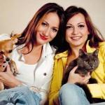 Na osnovu toga da li birate psa ili mačku, vi ste osoba sa OVIM osobinama!
