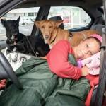 Nisu joj dali u stan sa psima. Ona odlučila – živećemo svi u automobilu!