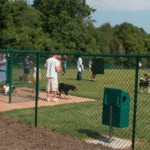 KOME SMETA: Park za pse na Banovom Brdu ipak NEĆE osvanuti?!