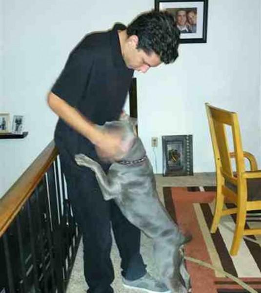 Autistični dečak i napušten pas petface