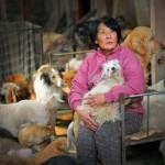 KAKVA ŽENA: Platila 1.000 evra da bi spasila pse namenjene festivalu mesa u Kini!