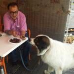 SARAJEVO: Tražio da se inspektorka izvini psu zbog klevete i duševnih boli!