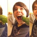 DA NE POVERUJETE: Pogledajte kako papagaj, kućni ljubimac, vadi zub svom malom vlasniku!