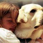 ZATO SU NAŠI NAJBOLJI PRIJATELJI: Pas oseća kada neko ne voli njegovog vlasnika!