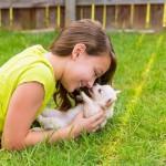DOKAZANO: Pas je najbolje oružje za pobedu nad lenjošću!