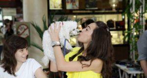 pas pokazuje ljubav vlasniku petface