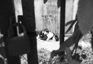 patnja zarobljenih pasa petface2