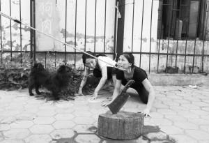 patnja zarobljenih pasa petface