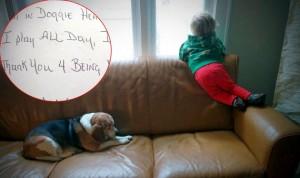 pismo psu petface