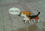 psi od kartona petface