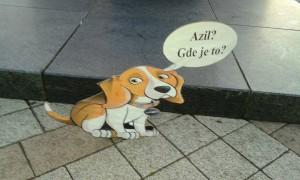 NOVI SAD: Psi lutalice od kartona sa jasnim porukama - UDOMITE! (FOTO)