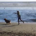 KORISNO: Prvi put sa psom na letovanje!