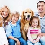NOVA ODLUKA: Jedan pas ili tri mačke u stanu!