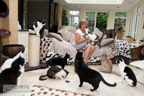 u kući živi sa 122 mačke petface.png2