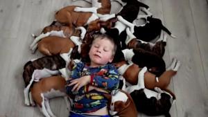 život sa 16 štenaca petface