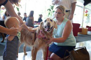 Psi sa posebnim potrebama petface