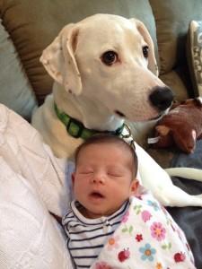 beba i pas petface13