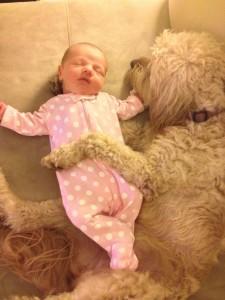 beba i pas petface18