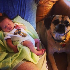 beba i pas petface5