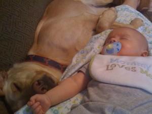 beba i pas petface7
