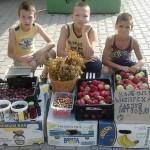 LAZAREVAC: Dečaci prodaju voće i kupuju hranu za napuštene pse!