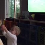 LJUBITELJ SPORTA: Pas koji gleda fudbal! (VIDEO)