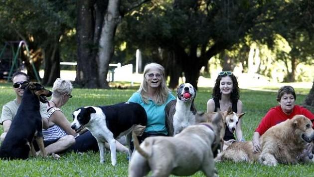 psi poboljšavaju društvene odnose petface4