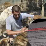 POTPIŠI I TI: Inspekcija zatvara sklonište za pse koje je Milica spasavala sa ulica!