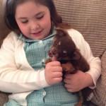 SREĆA: ukraden pas vraćen porodici!