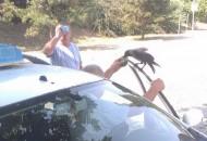 Taksista podelio flašicu vode sa ptičicom petface