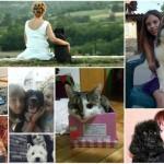 SLAVIMOOO: Stigla nam je i 800. fotografija ljubimaca!
